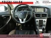 Volvo V40 OCEAN RACE