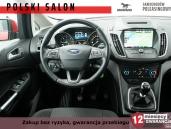 Ford C-MAX Navi
